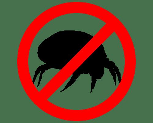 Matratzen reinigung für Allergiker